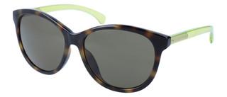 Sluneční brýle Calvin Klein Hnědé CKJ753S