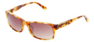 Sluneční brýle Guess Hnědé GU6865