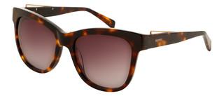 Sluneční brýle Balmain Hnědé BL2111S
